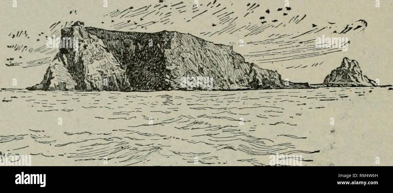 """. Annual report of the Board of Regents of the Smithsonian Institution. Smithsonian Institution; Smithsonian Institution. Archives; Discoveries in science. 374 BOGOSLOF VOLCANOES. Captain Tanner, who had been tBerc the previous year, expressed surprise at the altered appearances. Not onl}^ had the connecting spit disappeared, but the island had decreased in height at least 100"""" feet, and the pinnacle had fallen and was h^ing in huge masses on the steep incline. In 1895 Bogoslof was visited b3^ Becker and Dall, of the U. S. Geo- logical Survey. The}'^ found the activity of the steam vents  - Stock Image"""