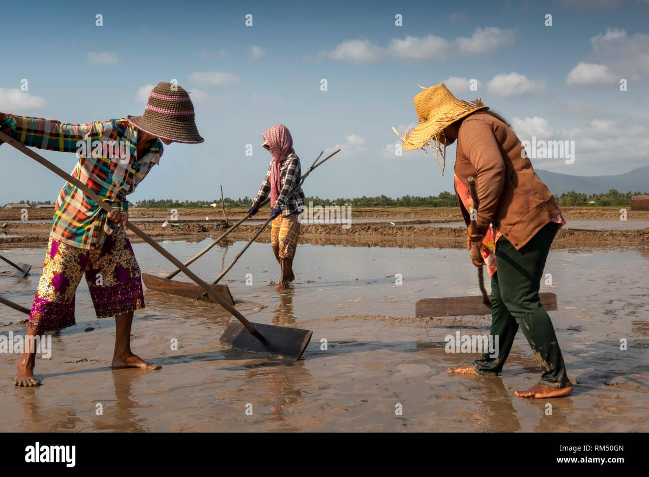 Cambodia, Kampot Province, Kampot, Tuek Chhou, Salt Fields, women preparing field for flooding with seawater Stock Photo