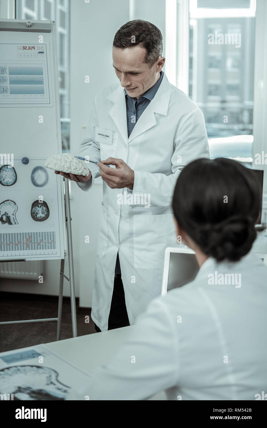 Executive doctor presenting gypsum model of brain during consultation - Stock Image