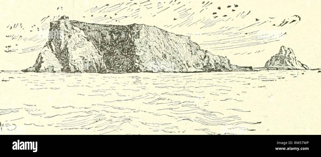 . Annual report of the Board of Regents of the Smithsonian Institution. Smithsonian Institution; Smithsonian Institution. Archives; Discoveries in science. 374 BOGOSLOF VOLCANOES. Captain Tanner, who had been tfiere the previous year, expressed surprise at the altered appearances. Not only had the connecting spit disappeared, but the island had decreased in height at least 100 feet, and the pinnacle had fallen and was lying* in huge masses on the steep incline. In 1895 Bogoslof was visited Irr Becker and Dall, of the U. S. Geo- logical Survey. The}^ found the activity of the steam vents greatl - Stock Image