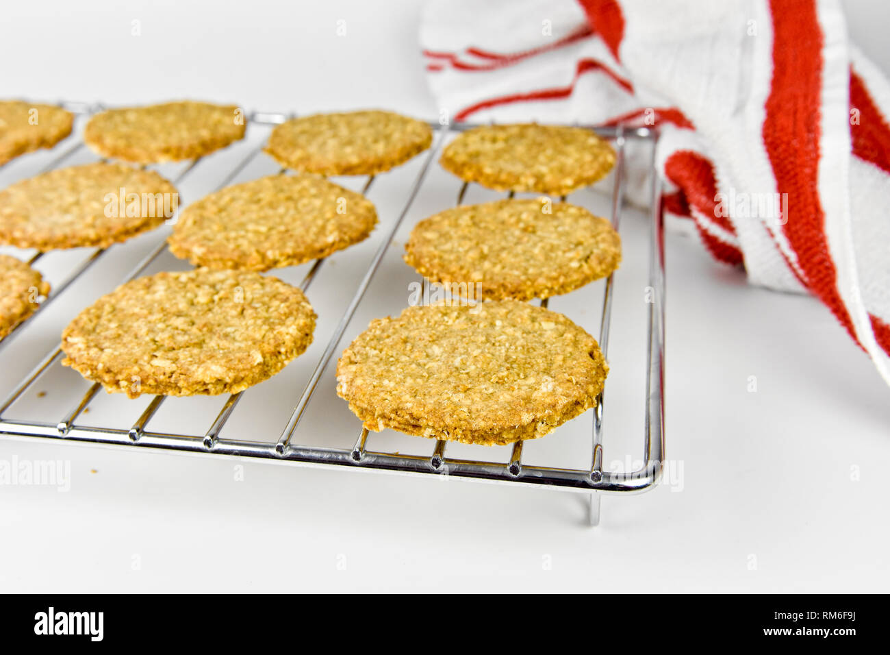 Freshly baked homemade digestive biscuits on cooling rack - Stock Image