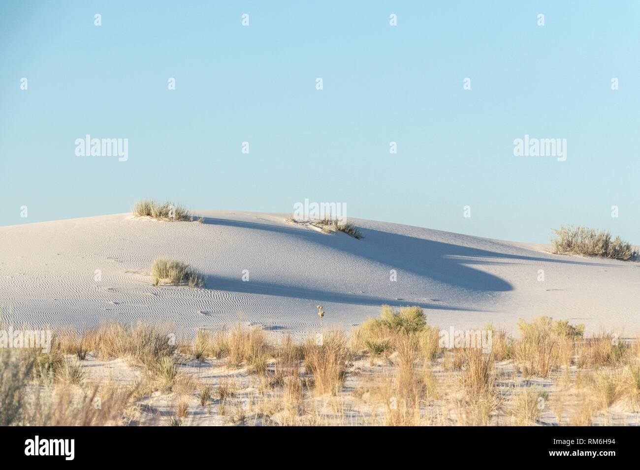 Discover the top things to do in White Sands, New Mexico. Explore the the world's largest gypsum sand dunes of White Sands National Monument. - Stock Image