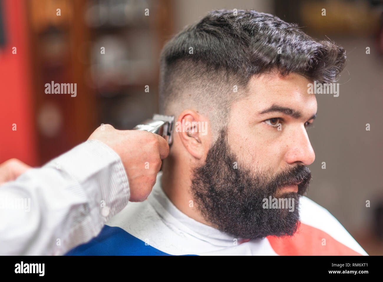 Handsome bearded man, getting haircut by barber, with electric trimmer at barbershop . - Stock Image