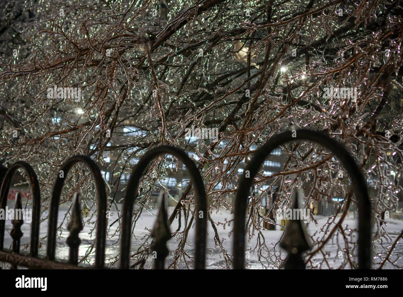 """Even though the Toronto ice storm always causes a lot of real damage in the city there is undeniable beauty it brings with its literal """"silver lining"""" Stock Photo"""