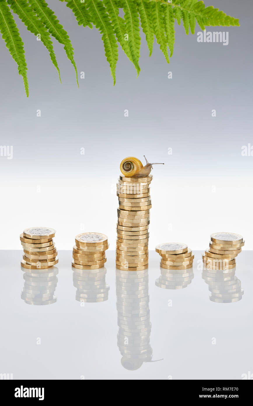 Garden Snail Sitting onTop a Stack of £1 Coins Stock Photo