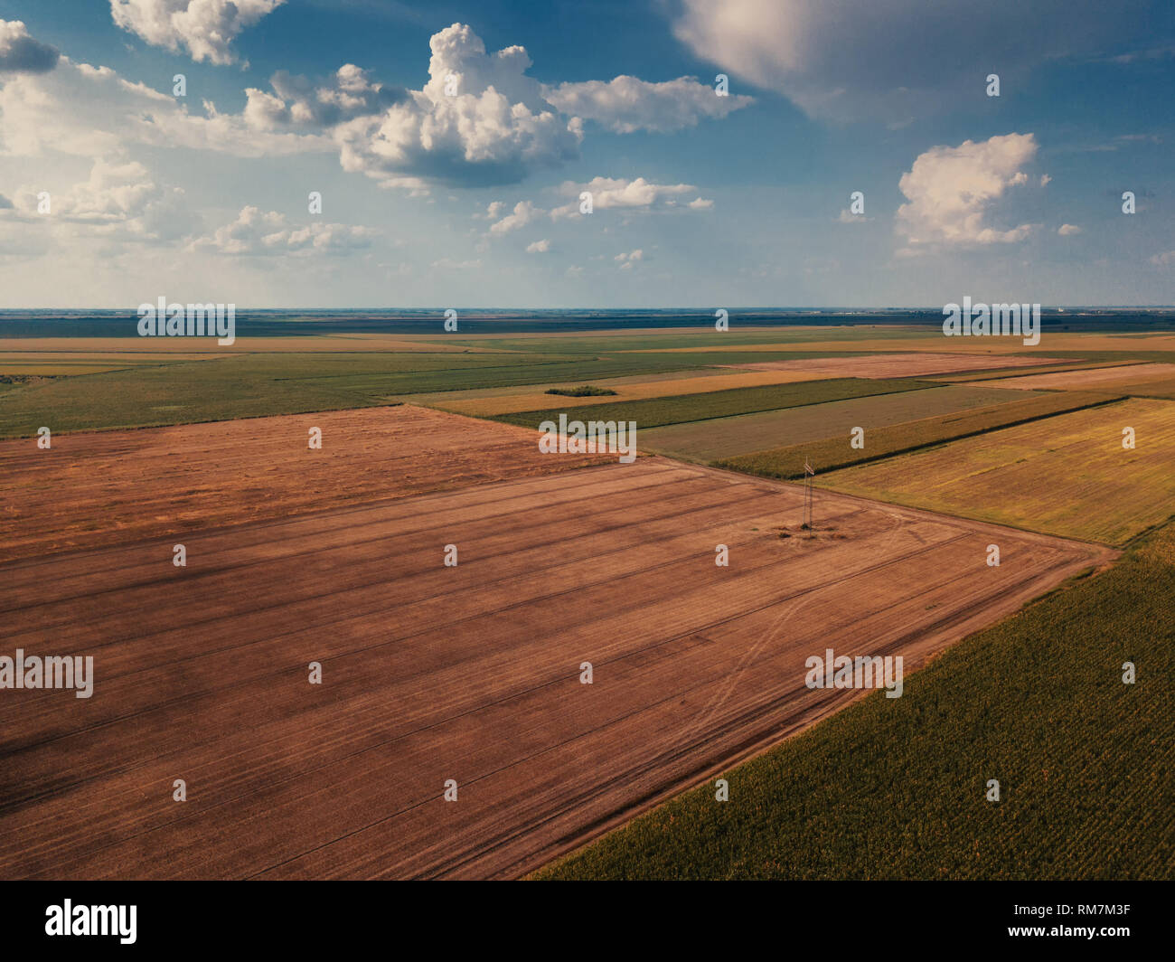 Drone photography of cultivated fields in summer, plain countryside landscape from high angle view - Stock Image