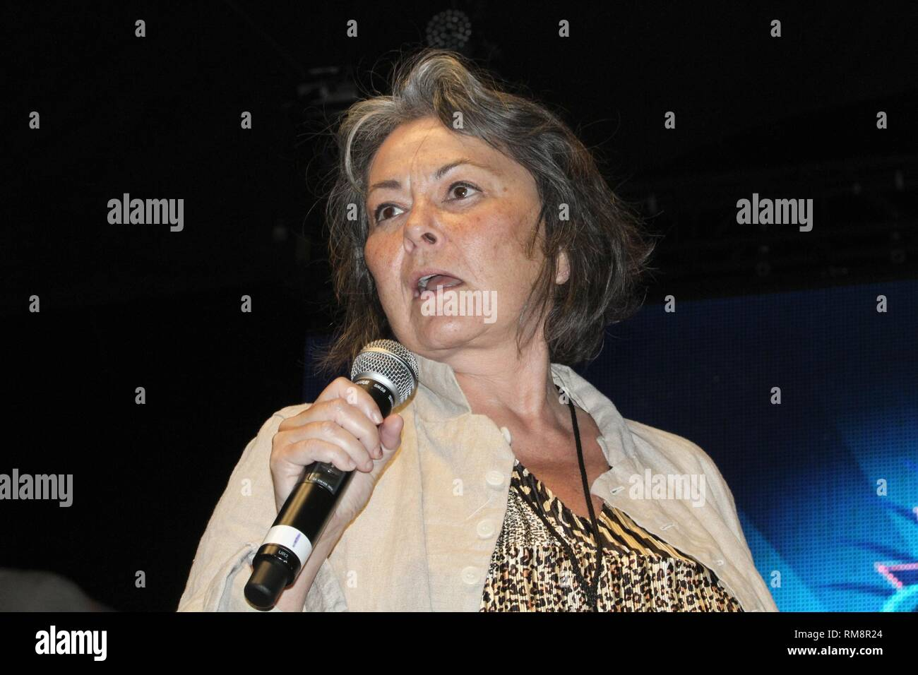 Presidential candidate Roseanne Barr is shown giving a speech on stage at the Gathering of the Vibes music festival in Bridgeport, Connecticut. Stock Photo