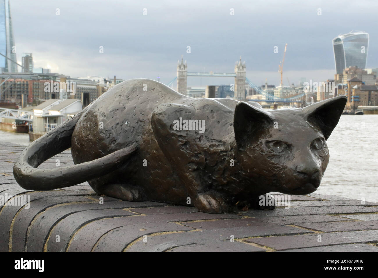 Statue of the cat of Dr Alfred Salter (16 June 1873 – 24 August 1945) in Bermondsey who was a British medical practitioner and Labour Party politician. - Stock Image