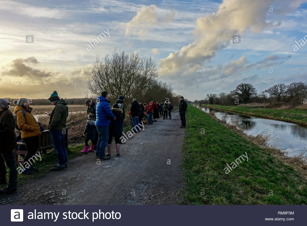 Birdwatchers wait for the evening Starling murmuration over Shapwick Heath National Nature Reserve. - Stock Image