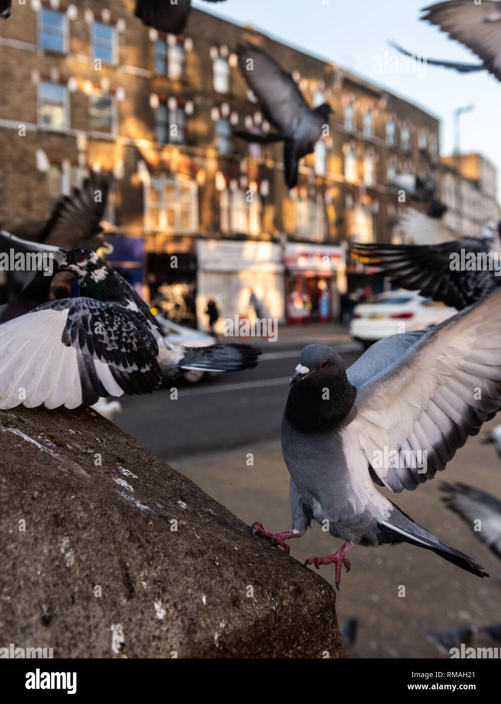 Enjoy the many sights at Camden Market on a bright sunny day in London England - Stock Image
