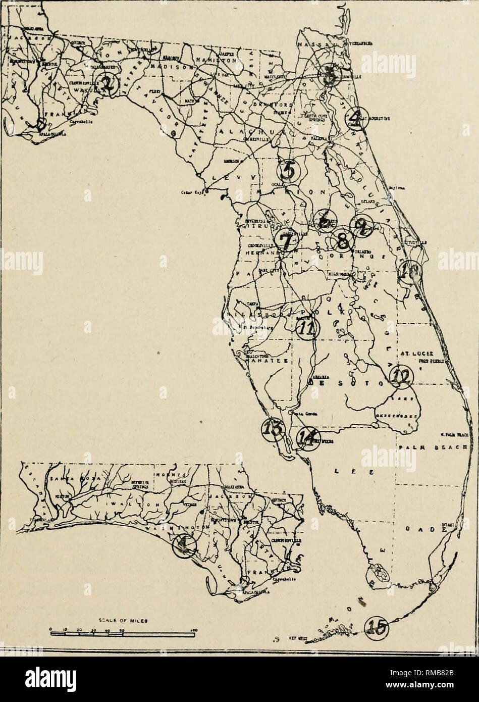 Annual Report Florida Geological Survey Geology Florida