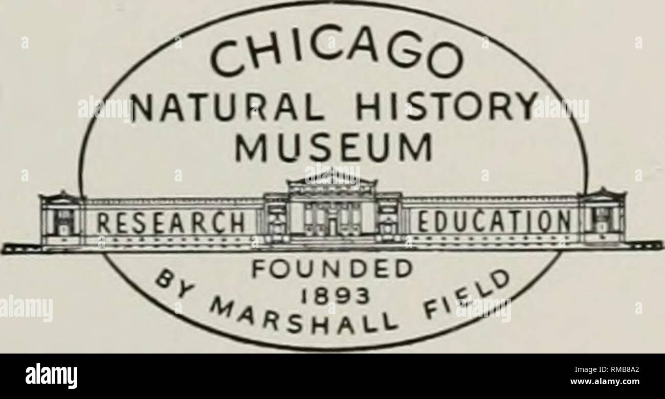 . Annual report. Field Museum of Natural History; Natural history. Report of the Director to thi Board of Trustees for the year I960. CHICAGO NATURAL HISTORY MUSEUM 1961. Please note that these images are extracted from scanned page images that may have been digitally enhanced for readability - coloration and appearance of these illustrations may not perfectly resemble the original work.. Field Museum of Natural History. [Chicago] : The Museum - Stock Image