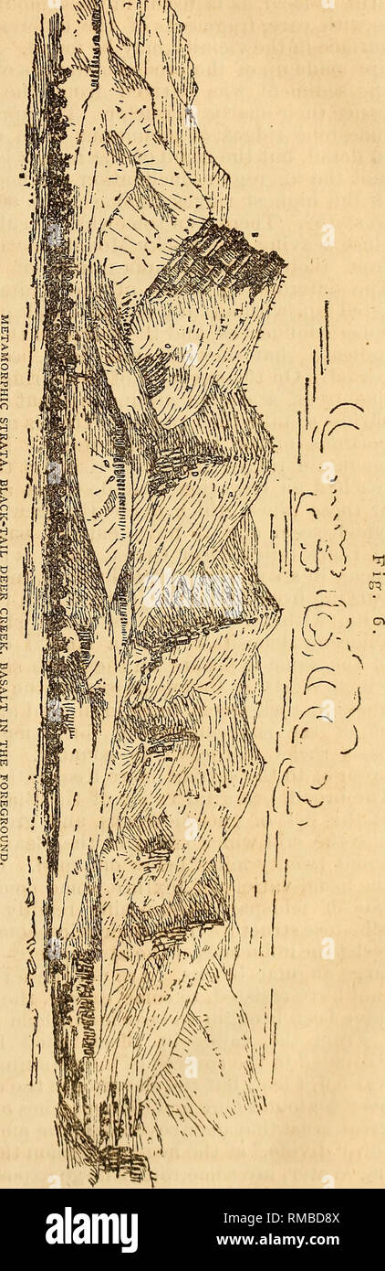 . Annual report. 1st-12th, 1867-1878. Geology. GEOLOGICAL SURVEY OF THE TERRITOEIES. 35 and tliirty miles from east to west, underlaid by the Pliocene deposit?, inclining gently northwest, influenced probably by the Black-tailed Deer Eange. The country about these sources or branches of the Jef- ferson fork is very fine, and appears most attractive to the eye, with a fertile soil, excel- lent water, and well adapted for settlement, except that the win- ters must be very severe. • The elevation of the valleys is from 6,000 to 7,000 feet,'involving early and late frosts, and deep winter snows. A - Stock Image