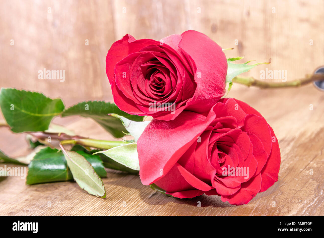 red roses put on wooden background as card or greeting or invitation of love , romantic concept in valentines day or for mother´s day - Stock Image