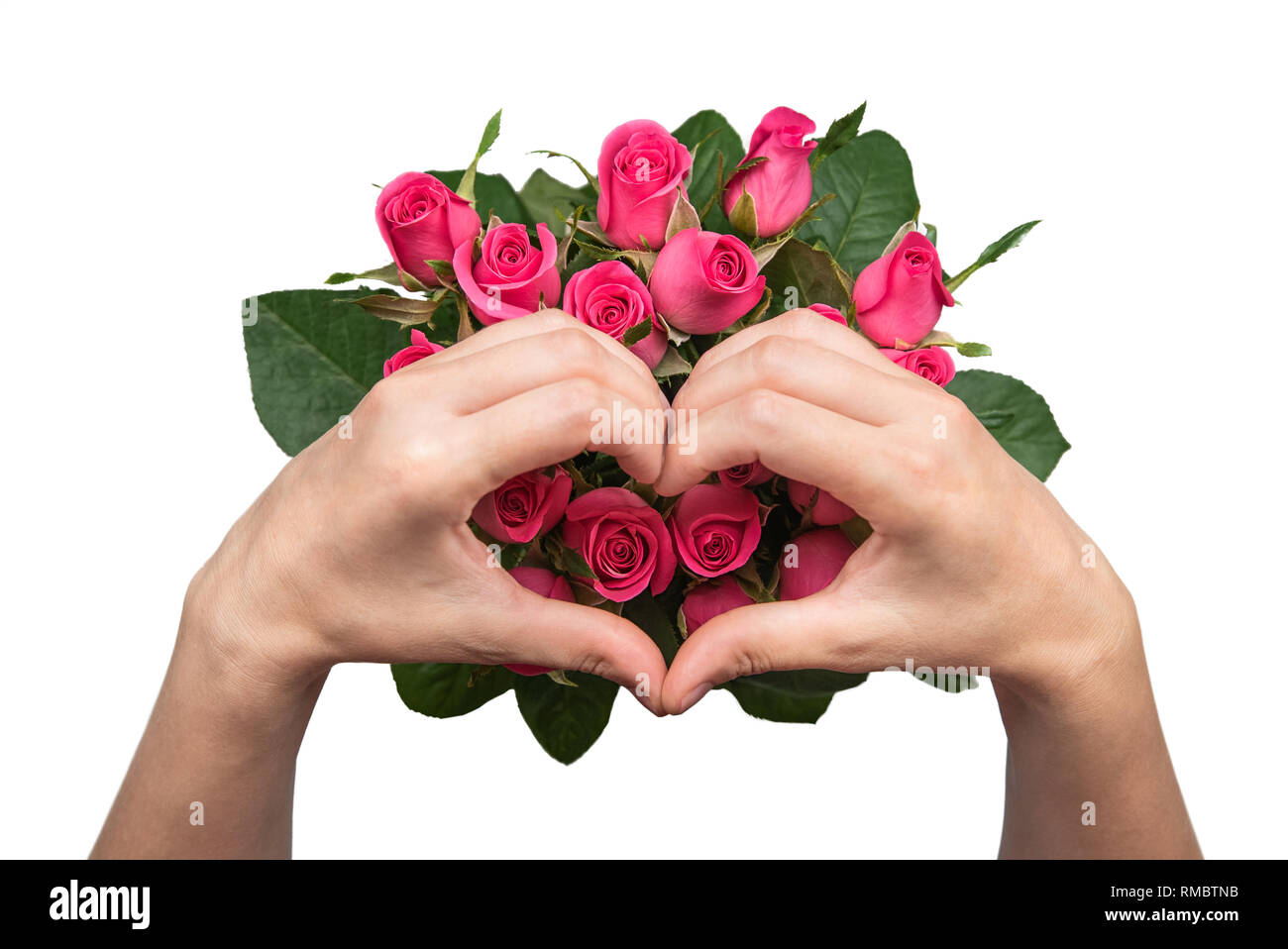 Women's hands with a bouquet of pink roses. - Stock Image