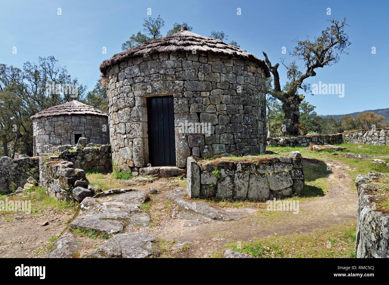 Reconstructed  castro stone houses of former celtic settlement Citania de Briteiros - Stock Image
