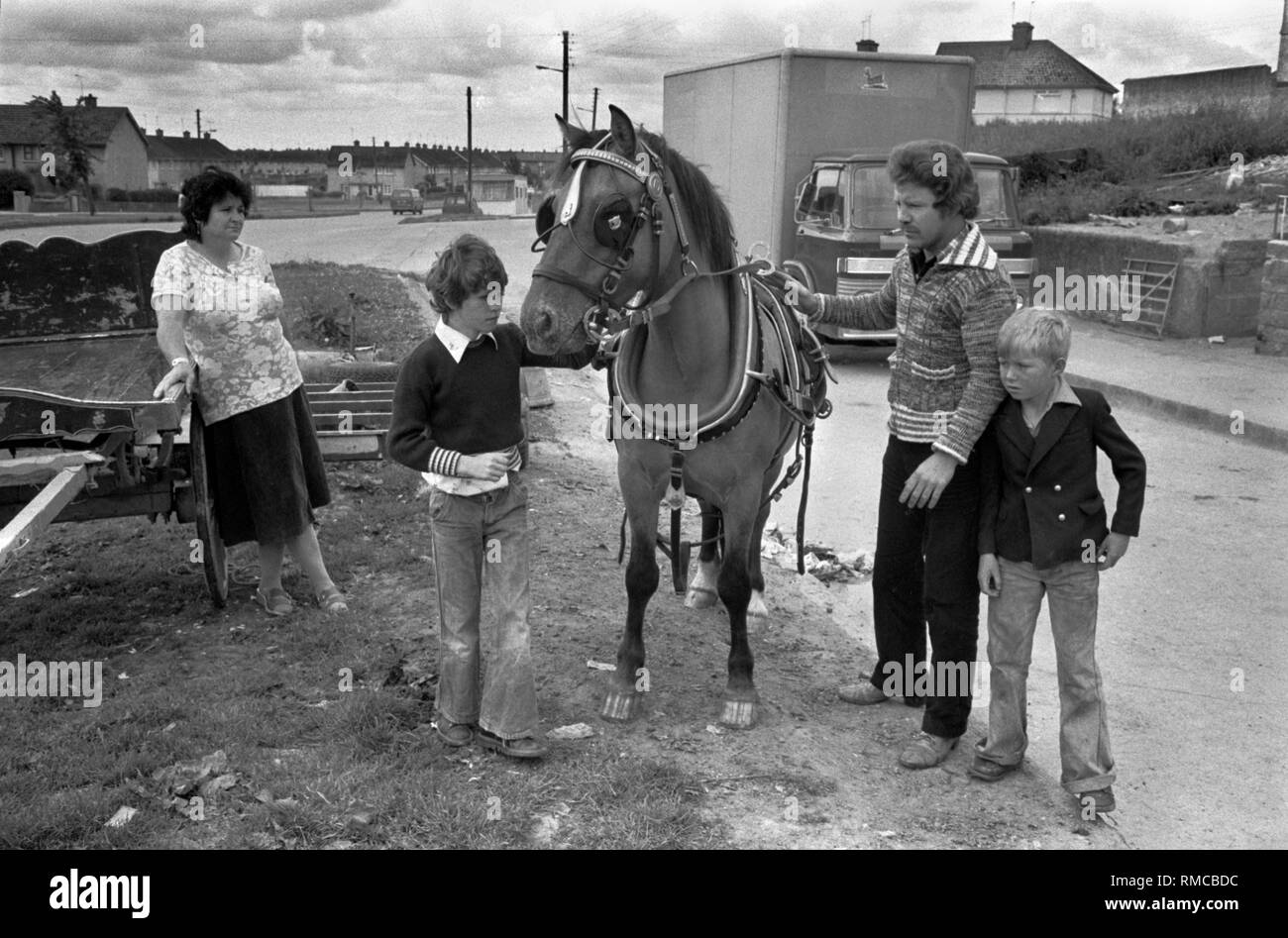 1970s Irish family group with their pet horse Limerick, in County Limerick, Eire.  West Coast of Southern Ireland 70s HOMER SYKES - Stock Image