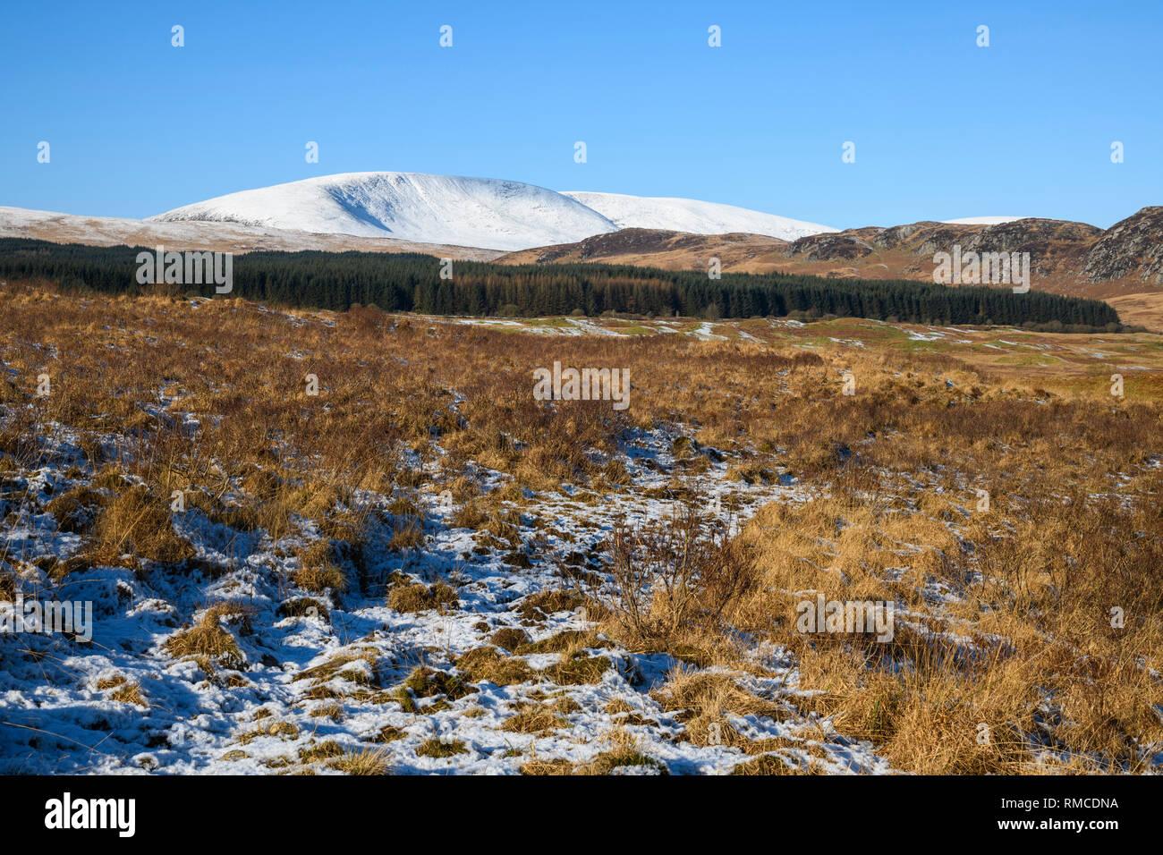 Cairnsmore of Fleet, Galloway Hills, Dumfries & Galloway, Scotland - Stock Image