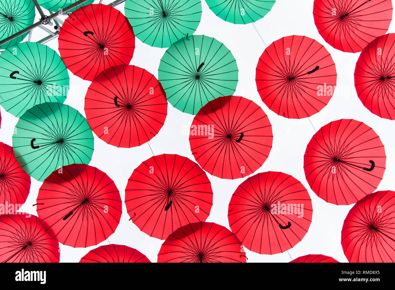 Beautiful colorful umbrellas or parasols with red and green canopies and crook handles hang outdoors on white sky background - Stock Image