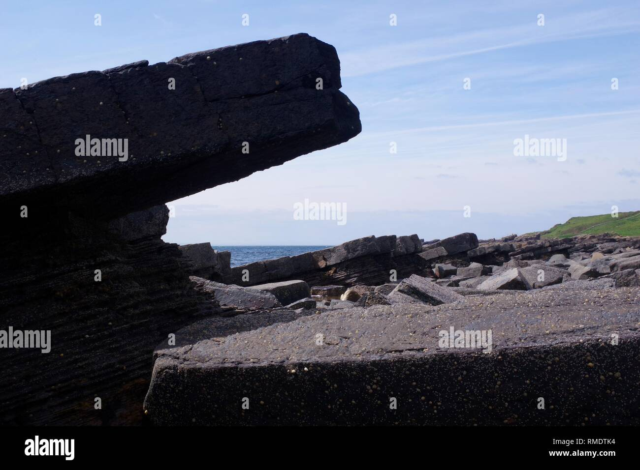 Carboniferous Sandstone Exposed on the Fife coast Near Crail, affected by Conjugate Jointing. Fife, Scotland, UK. - Stock Image