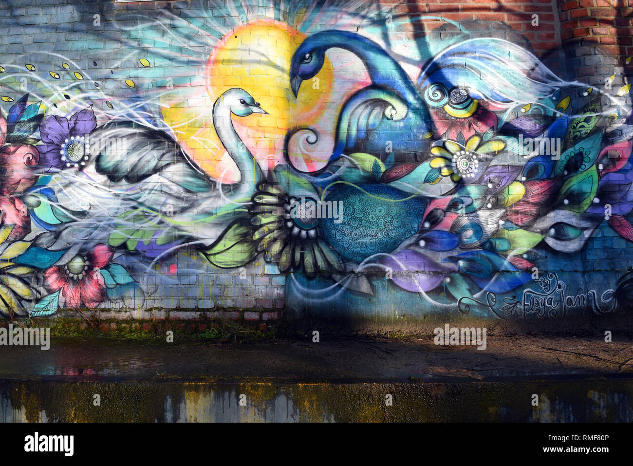 Krefeld, Germany. 11th Feb, 2019. 'Street Art Art' on the building of the 'Rhine Side Gallery' (partial view) on the banks of the Rhine in the district of Uerdingen, which was created by the street art artist 'Floya Jam' as part of the event 'Rhine Side Gallery 2018' of the city of Krefeld. Credit: Horst Ossinger/dpa/Alamy Live News - Stock Image