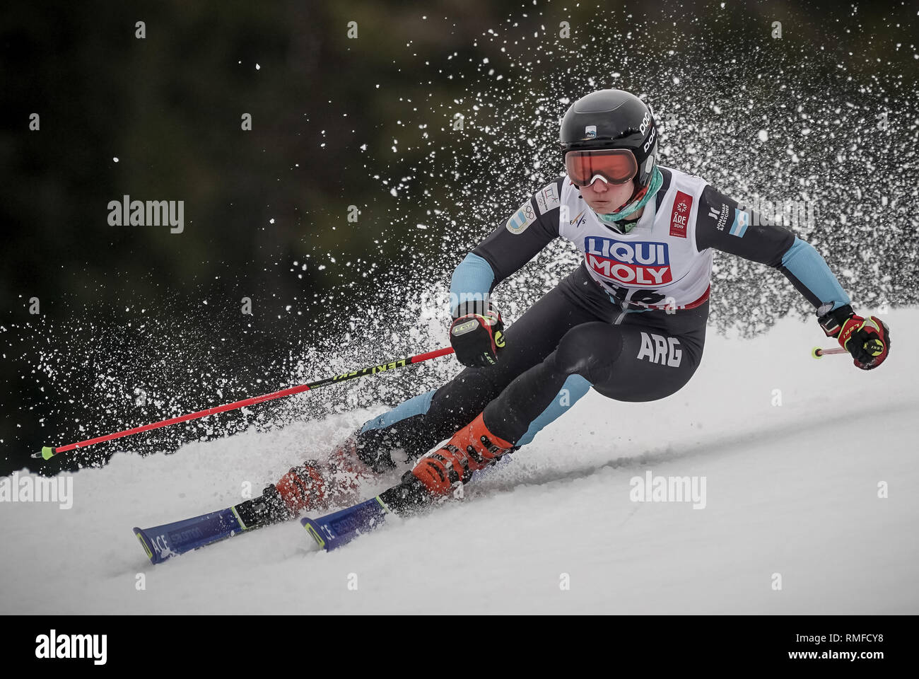 Are, Sweden. 14th Feb, 2019. Alpine skiing, world championship, giant slalom, women, 1st round: Nicol Gastaldi from Argentina on the race track. Credit: Michael Kappeler/dpa/Alamy Live News - Stock Image