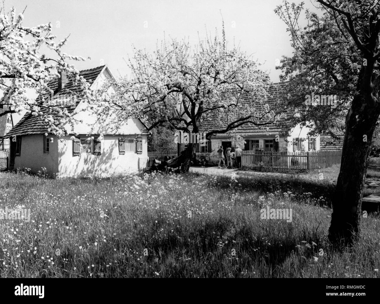 View over two `Poor Man´ houses with blooming fruit gardens in the open- air museum village Wackershofen. Undated picture. - Stock Image