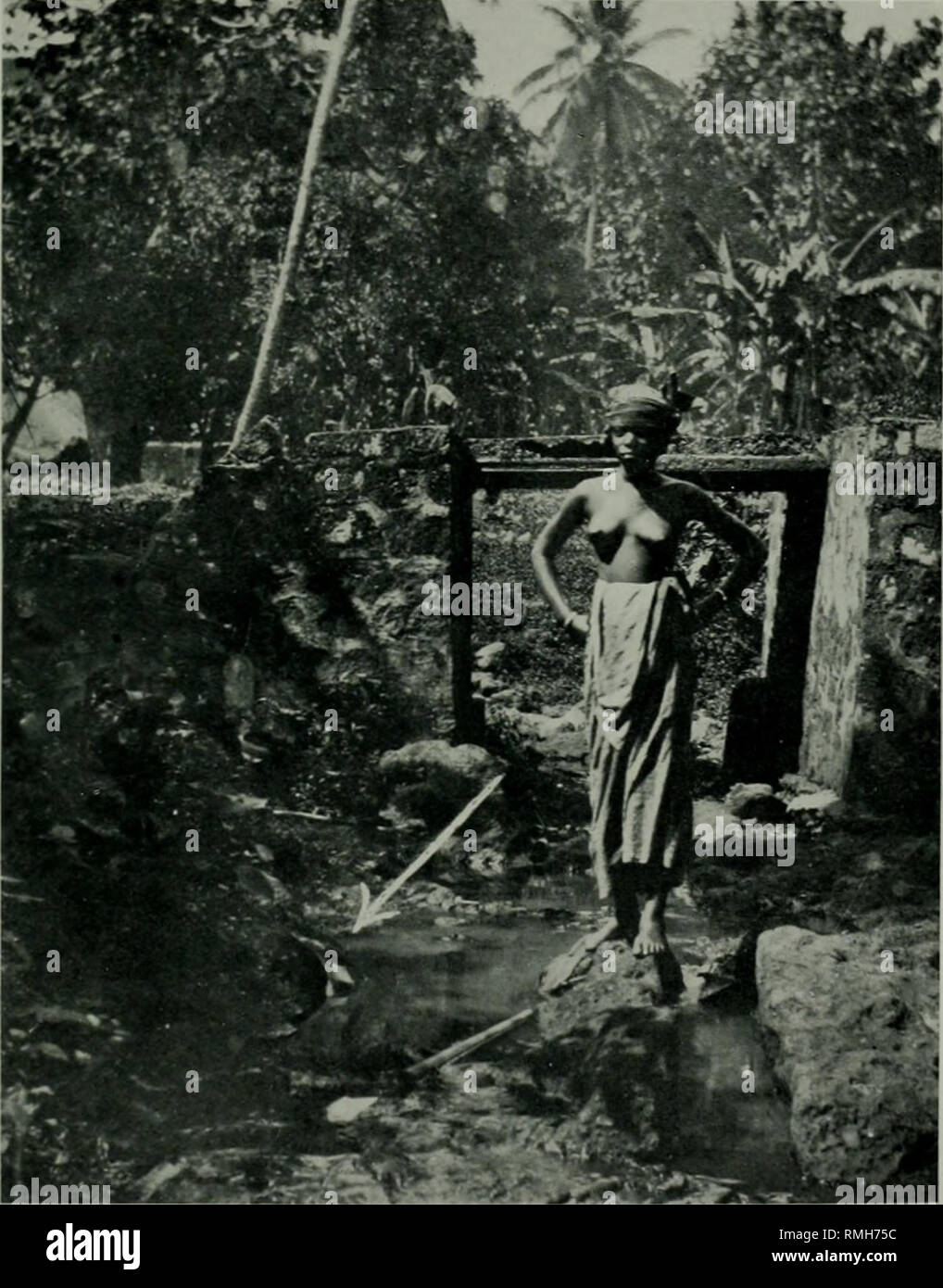 . Annals of tropical medicine and parasitology. Parasites. .-litnals Trop. MeJ. & ParasiuU, Vol. XV PLATE XXIX. Photograph No. 3 Anophclinc breeding place, in stream bed in the town, bank to left of where the woman is standing. A. costalis larvae found near C. Tinling & Co., /,/?/., /m/>.. Please note that these images are extracted from scanned page images that may have been digitally enhanced for readability - coloration and appearance of these illustrations may not perfectly resemble the original work.. Liverpool School of Tropical Medicine. Liverpool University Press [etc. ] - Stock Image