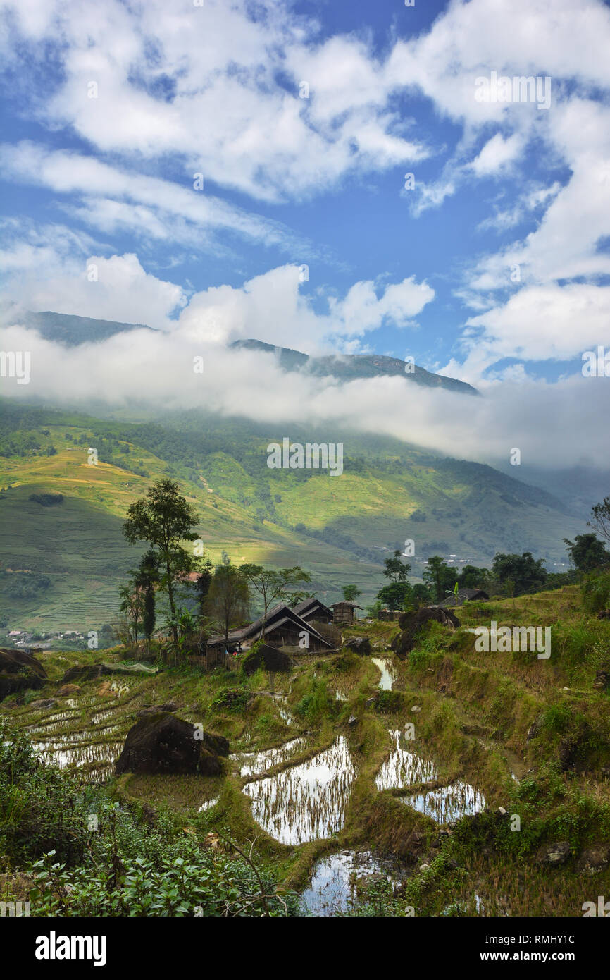 Traditional construction and rice terraces in Tavan, Muong Hoa Valley, Vietnam - Stock Image