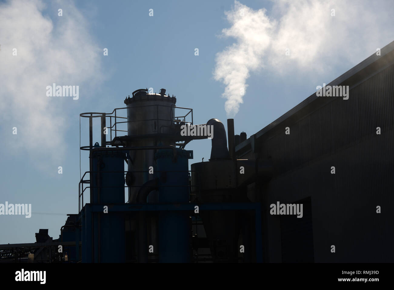 steam escapes from an evaporator at a meal processing plant - Stock Image