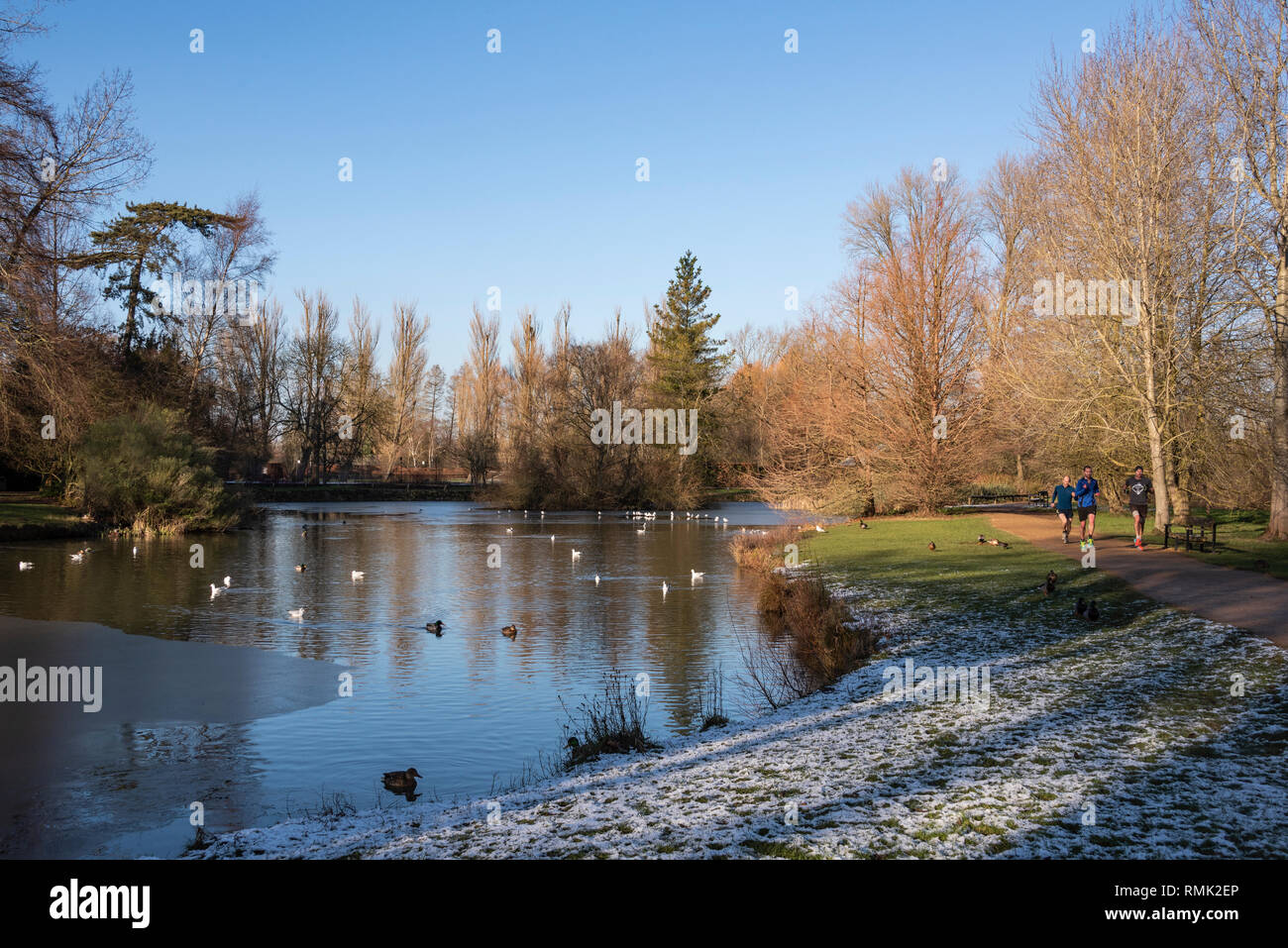 Joggers run round Cox's Pond, Oxford University Parks in Winter - Stock Image