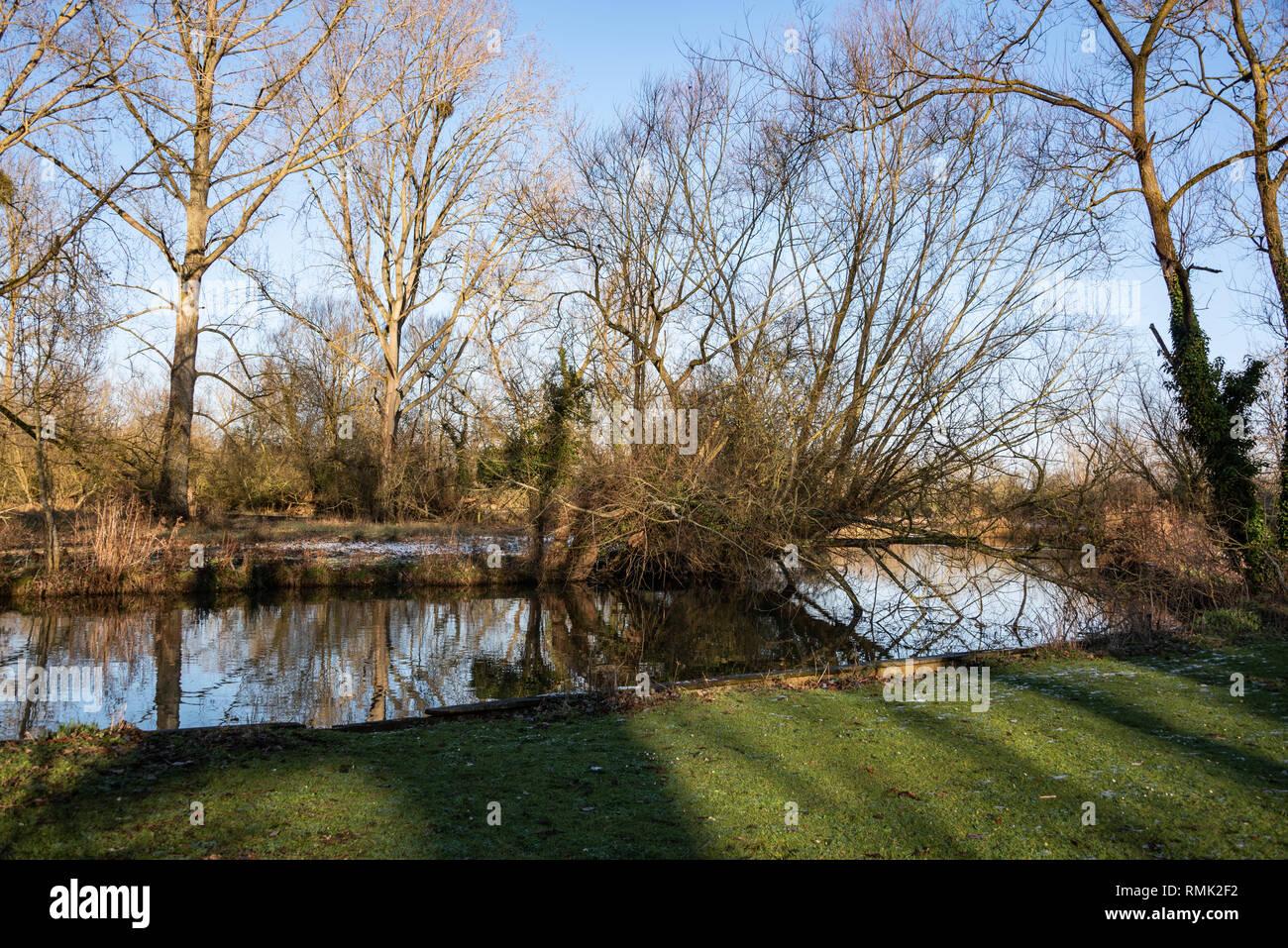 Parson's Pleasure, Oxford University Parks in Winter - Stock Image