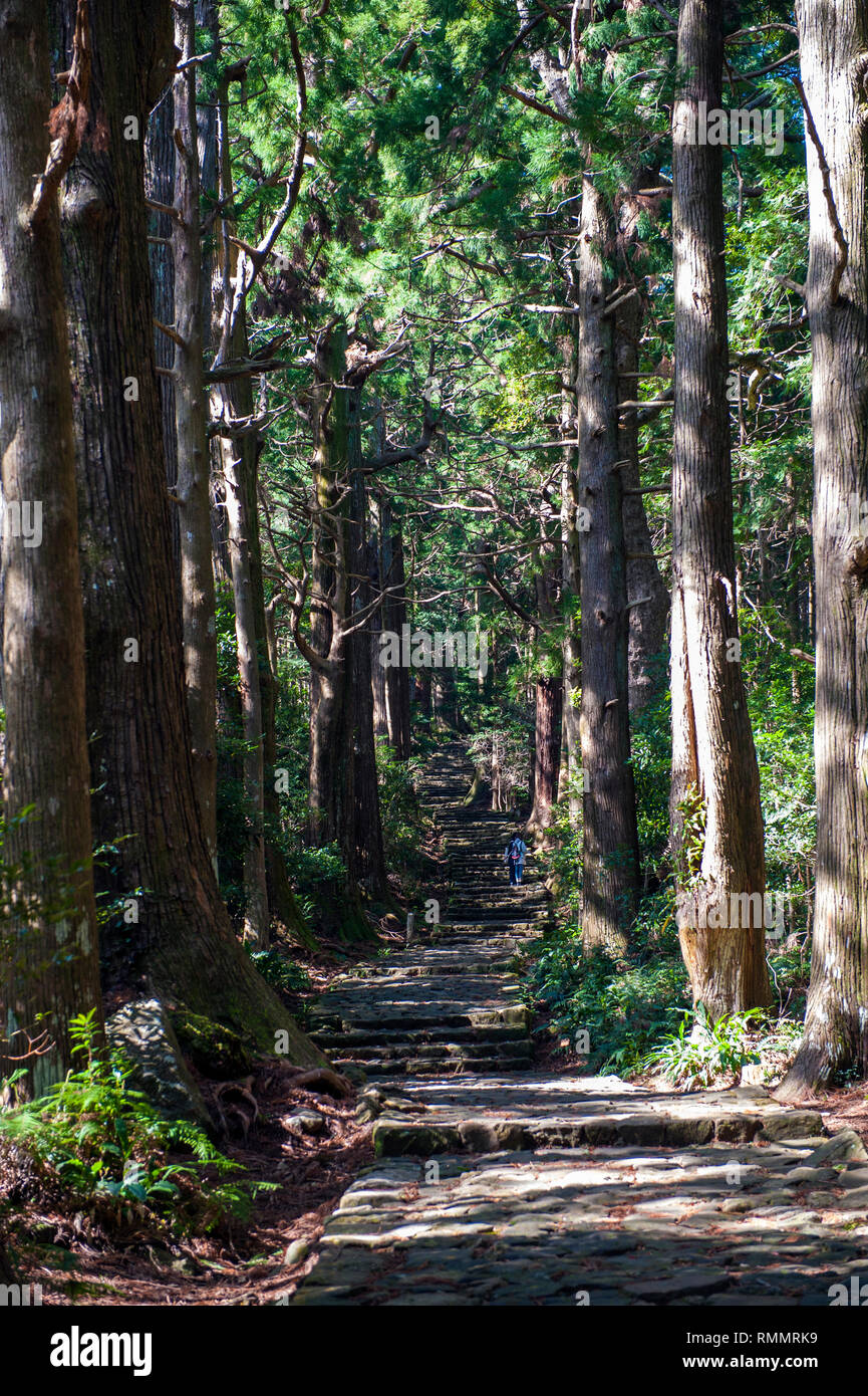 A thousand years ago, in the heyday of the Japanese imperial court, royals and nobles would embark on weeks-long treks to pray at the three principle  - Stock Image