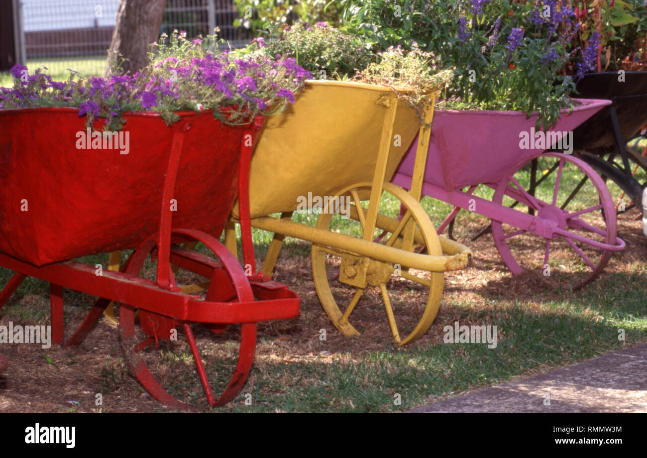 ROW OF COLOURFULLY PAINTED OLD WHEELBARROWS USED FOR HOLDING GARDEN PLANTS. - Stock Image