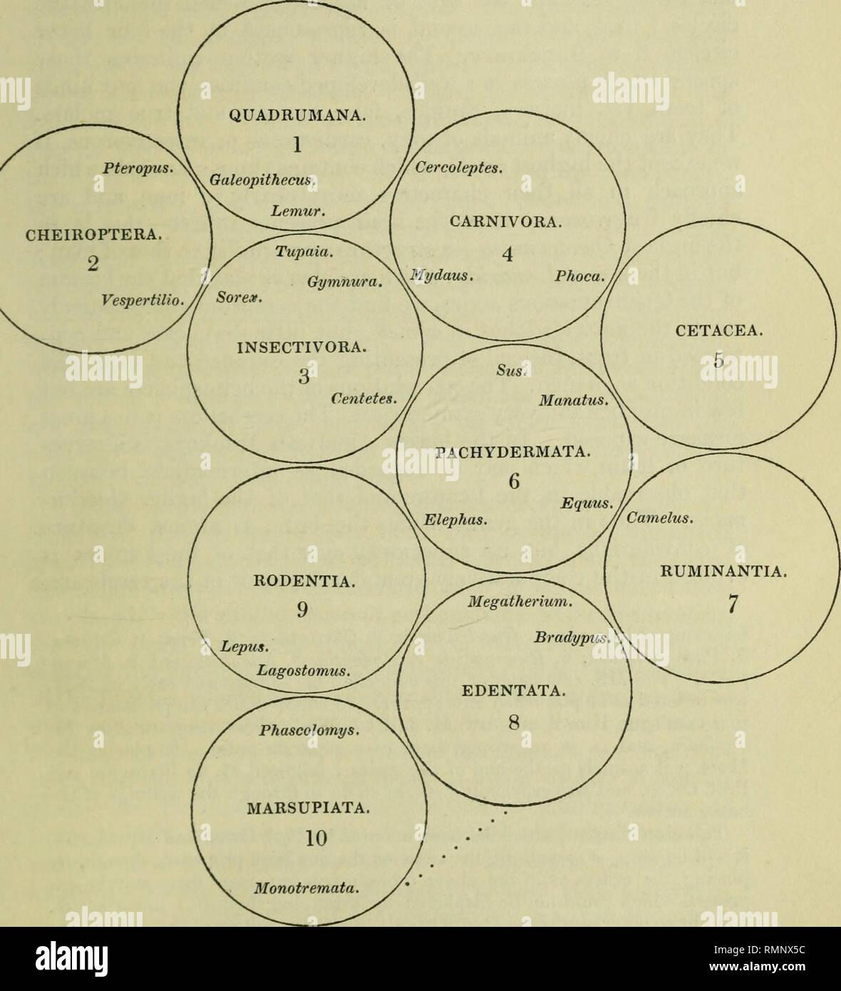 Annals of natural history  Natural history