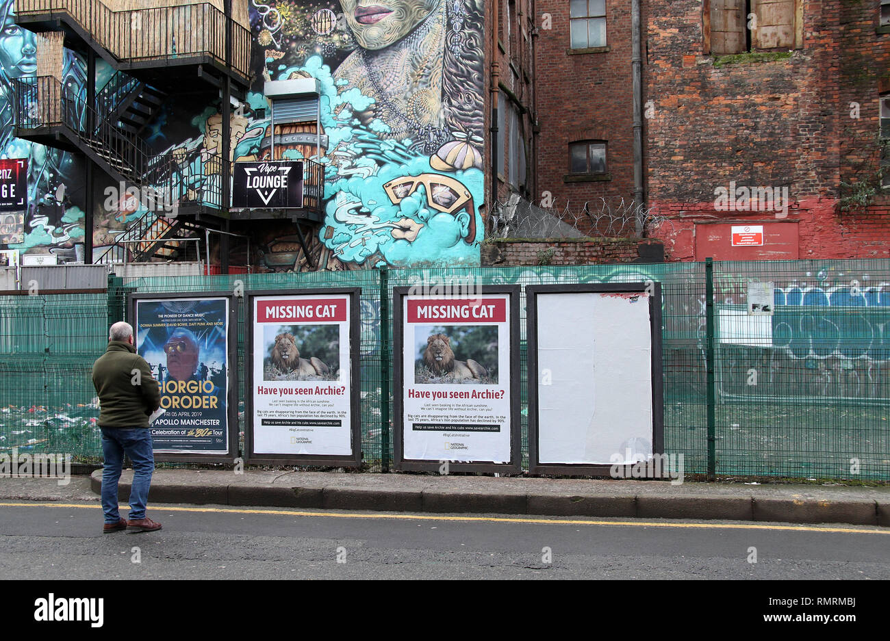 Missing Cat posters in Manchester - Stock Image
