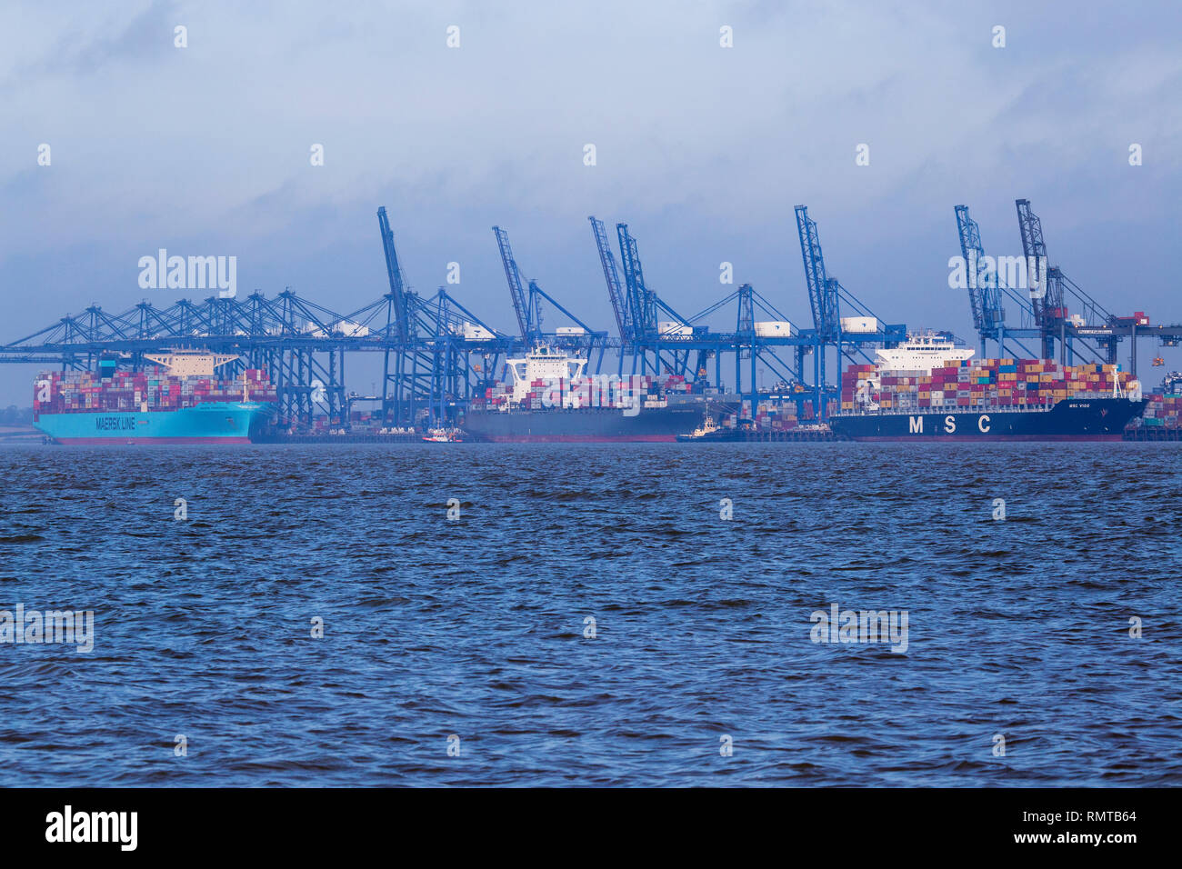 Container Ships Docked at Port of Felixstowe - Stock Image