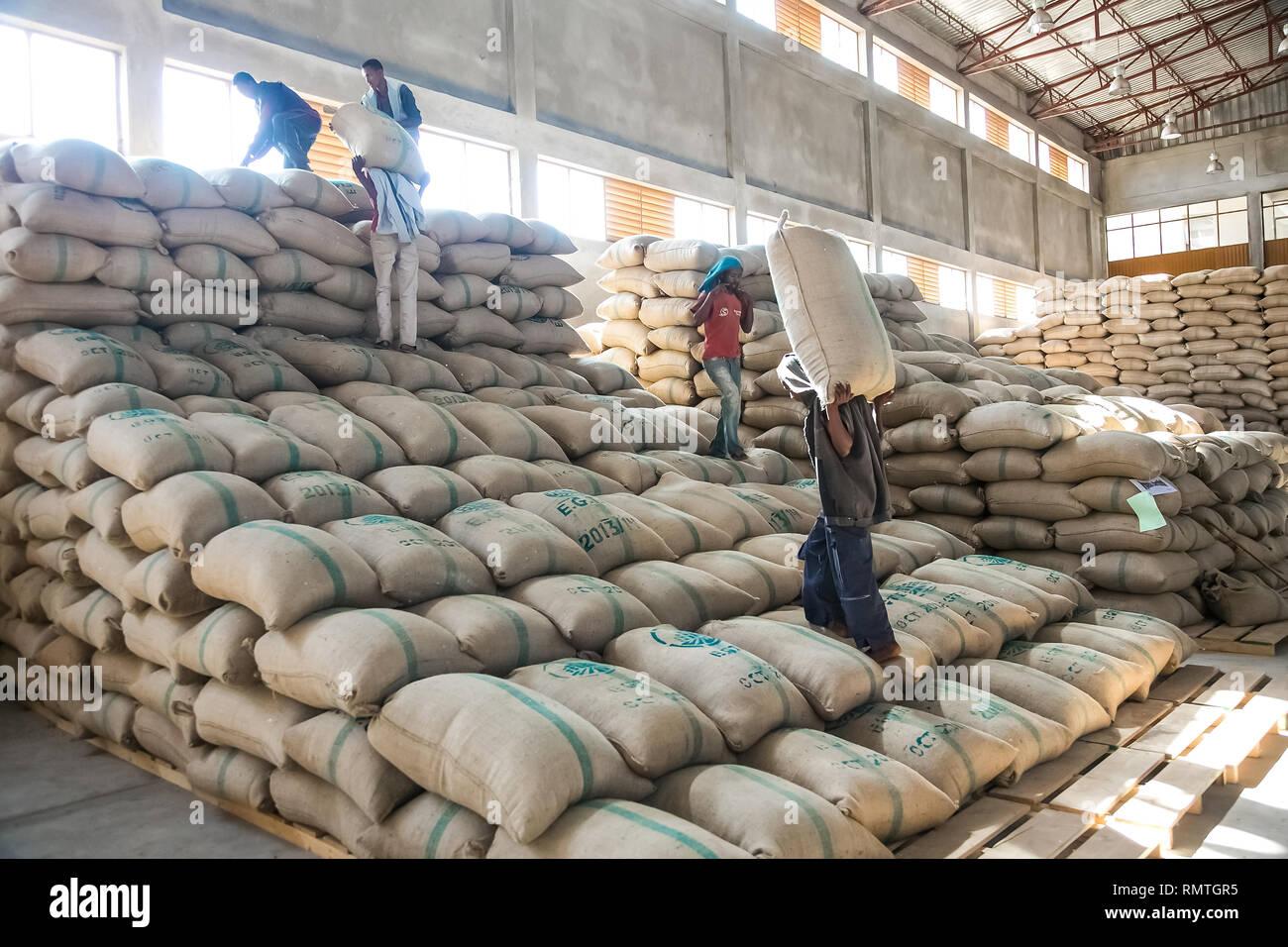f71488ea9e23 Ethiopia Coffee Industry Stock Photos   Ethiopia Coffee Industry ...