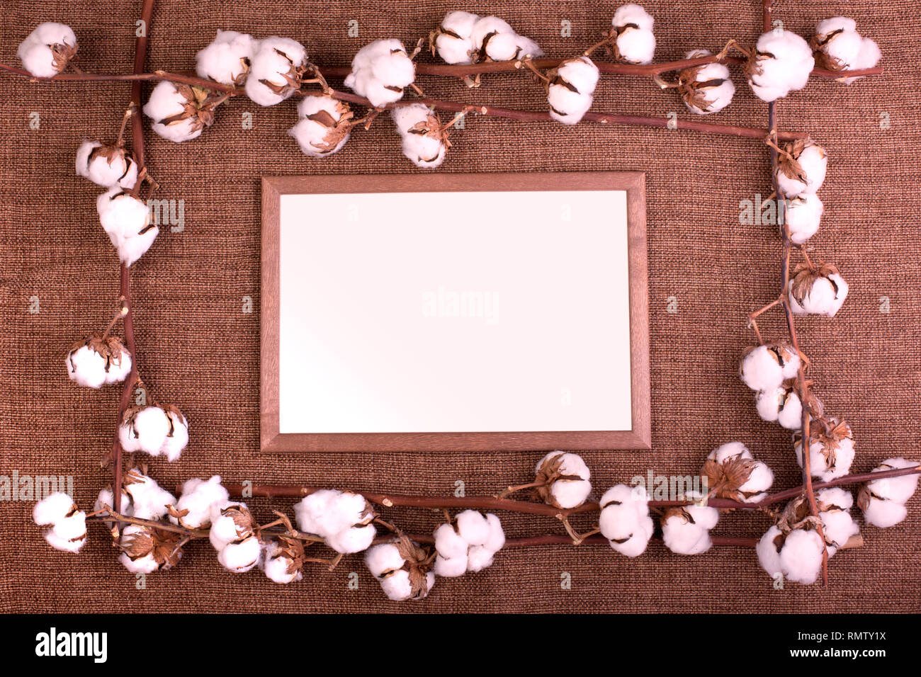 Frame with fluffy dried cotton bolls over rough brown burlap. Top view, copy space, greeting card - Stock Image