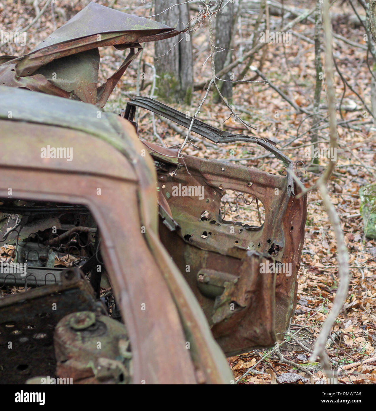 Abandoned car in the forest. - Stock Image