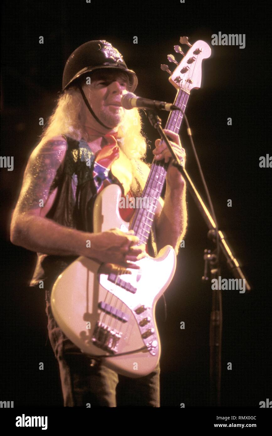 """Bassist Leon Wilkeson of the Southern rock band Lynyrd Skynyrd is shown performing on stage during a """"live"""" concert appearance. Stock Photo"""