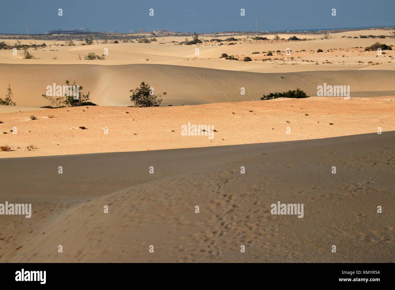 Impressionen: Sandduenen von Corralejo, Fuerteventura, Kanarische Inseln, Spanien/ sand dunes of Corralejo,Fuerteventura, Canary Islands, Spain. - Stock Image