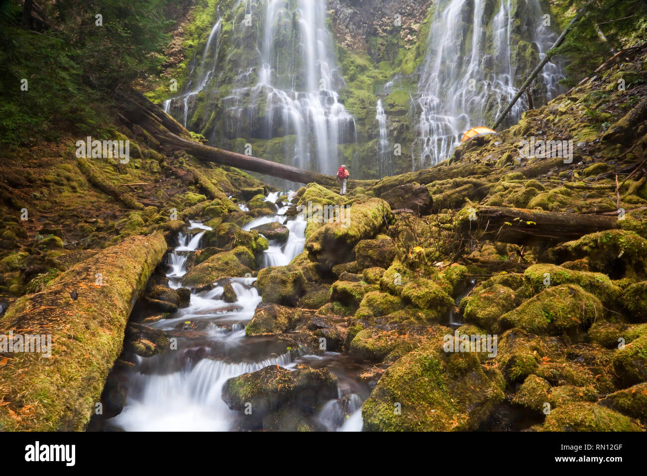 Hiker and Tent at Proxy Falls in Lane County Oregon Stock Photo
