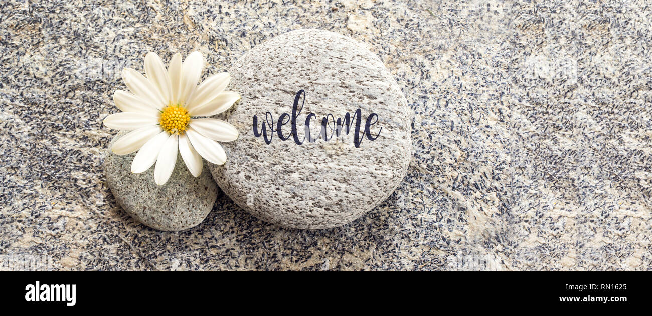 Word Welcome written on a stone background with a daisy - Stock Image