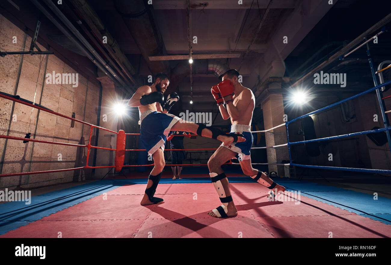 Two young men fighters exercising kickboxing in the ring at the health club - Stock Image