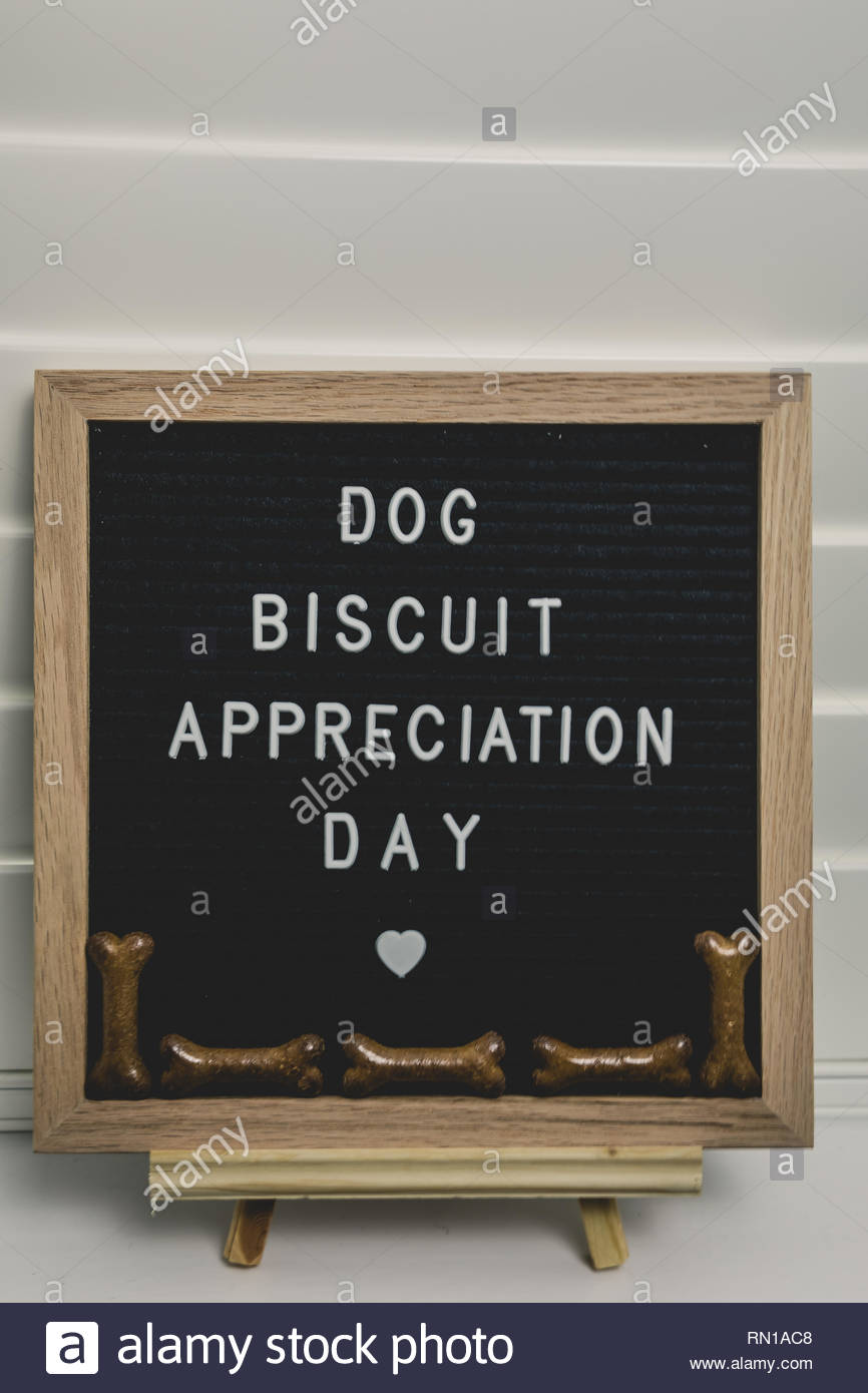 Dog Biscuit Appreciation Day - Stock Image
