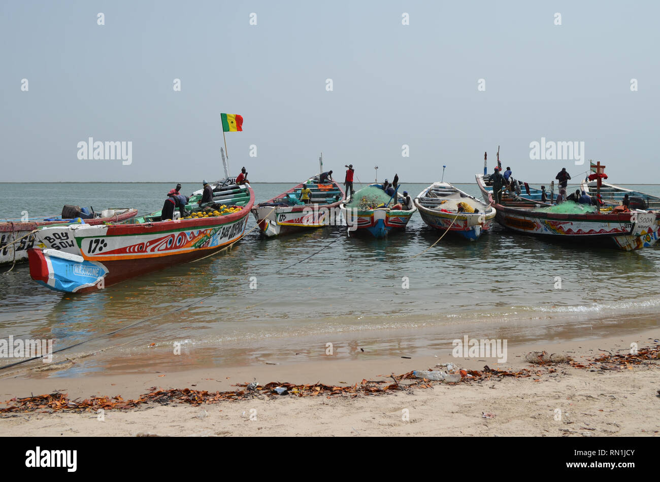 Pirogues used in the Sardinella fishery in Senegal, Western Africa Stock Photo