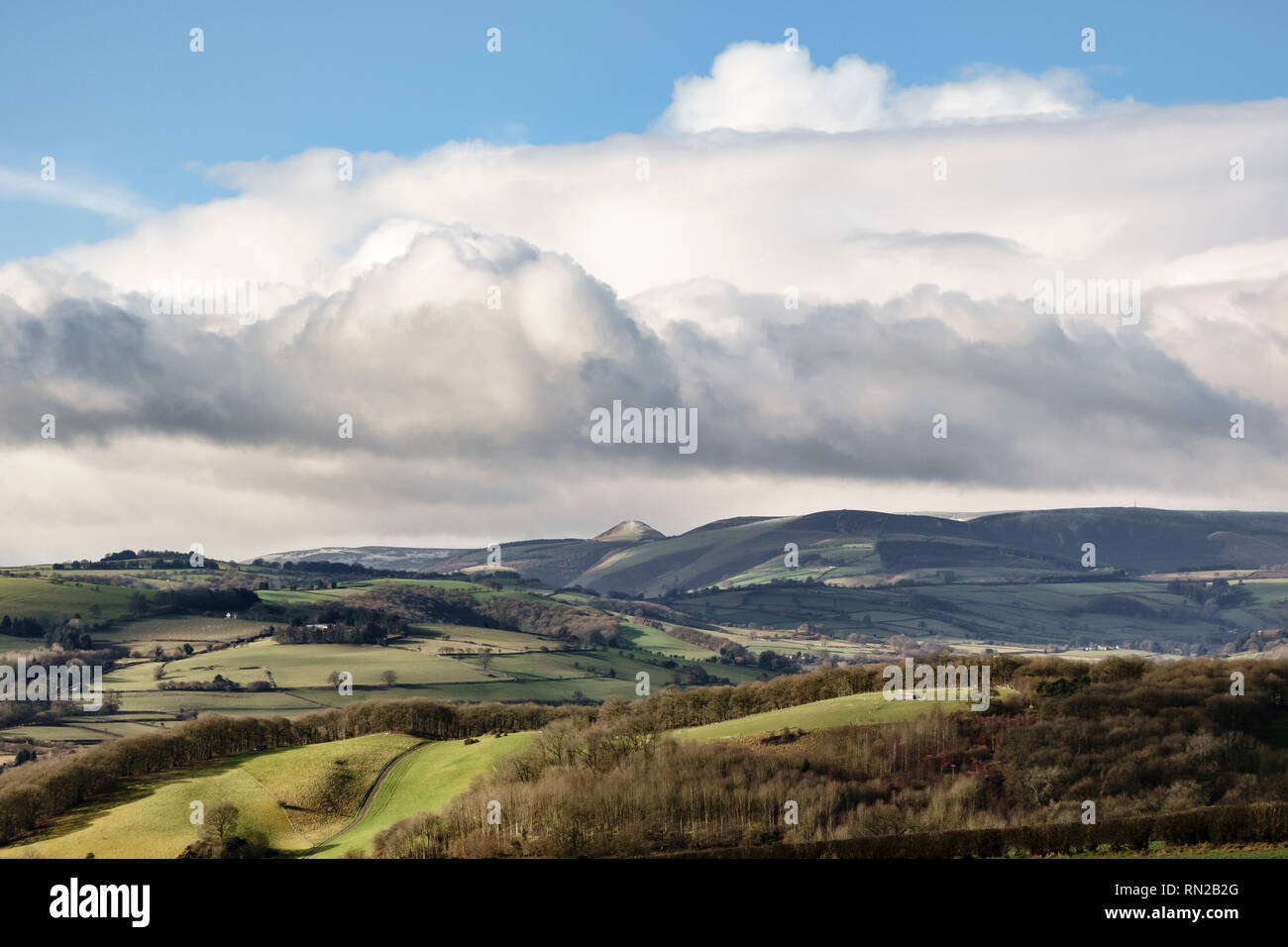 Near Presteigne, Powys, UK. Looking west over the peaceful Radnorshire countryside, in the Welsh borders. The conical hill is the Whimble (598m) - Stock Image