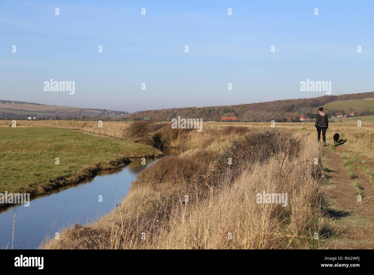 Woman walking dog along river in sunshine - Stock Image