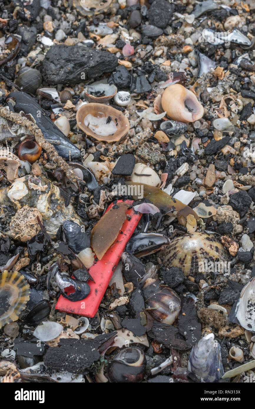 Shard of plastic sea waste washed ashore on beach. Metaphor 'war on plastic', plastic waste, plastic rubbish in the UK. - Stock Image